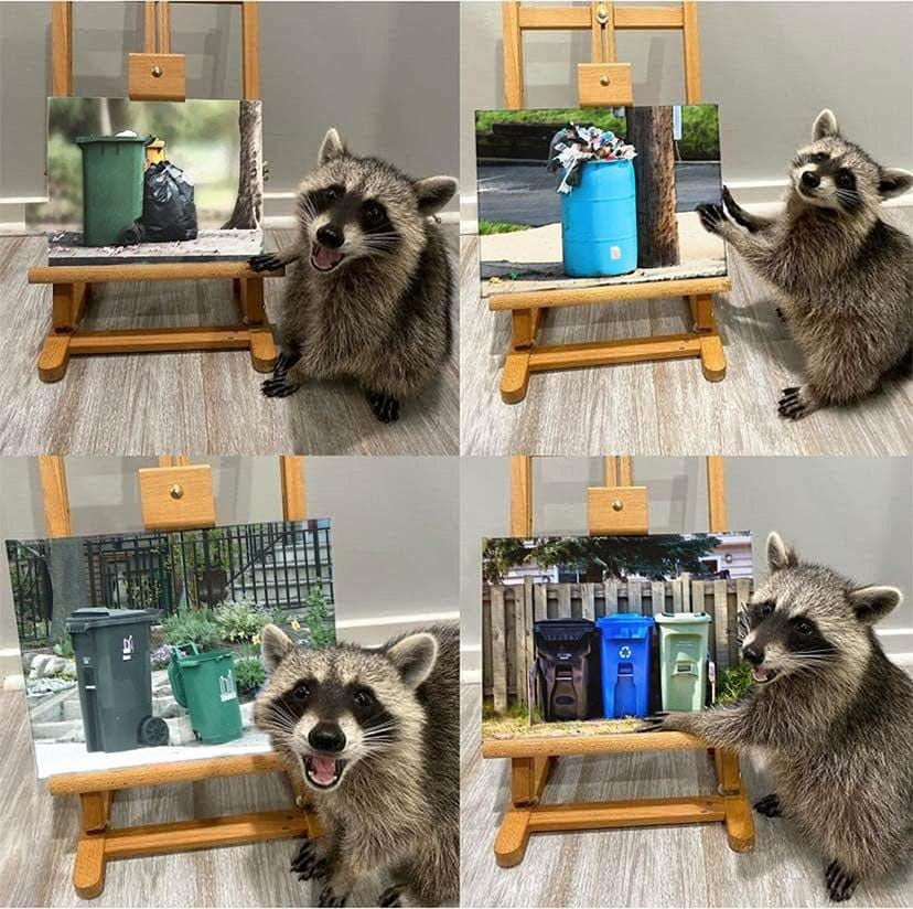 four panel comic of raccoon posing with paintings, but the paintings are pictures of garbage bins